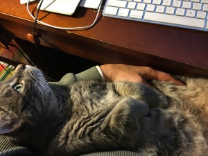 gg_helping-me-write